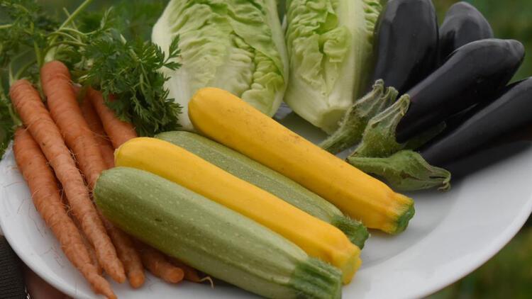 Bu sebzeler taptaze dalından koparılmış bir şekilde kapınızda…