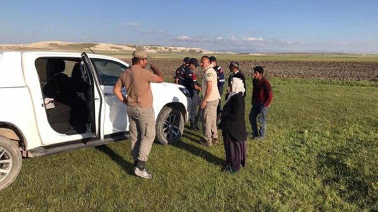 Kaçak salep soğanı toplayan 5 kişiye 365 bin lira ceza