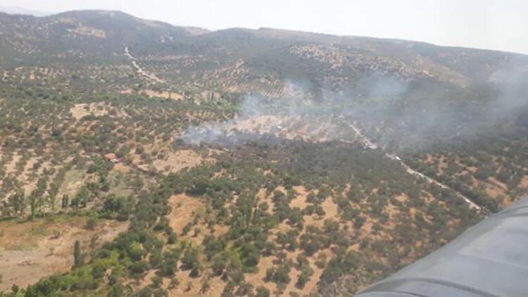 Çanakkale'de zeytinlik yangınında 5 dönüm alan zarar gördü