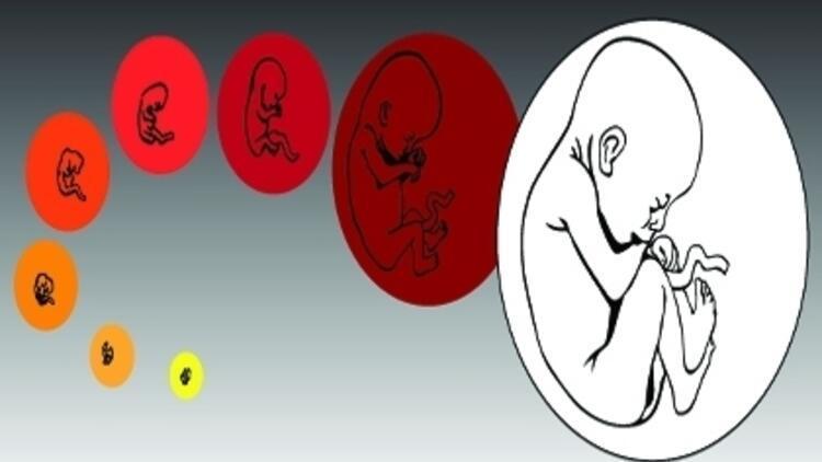 Bebek Sahibi Olma Şansınız Artıyor