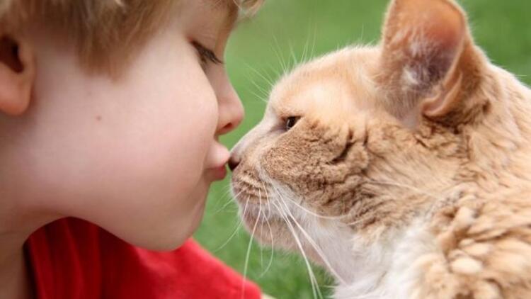 Çocuğa hayvan sevgisi aşılamanın yolları