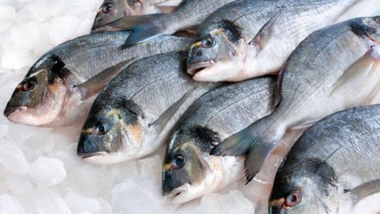 Taze balık, gözünden anlaşılır!