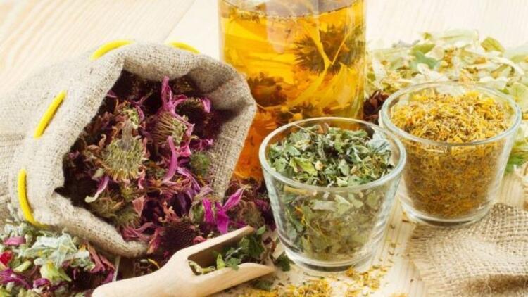 Şifalı bitkiler ile tedavi yolları