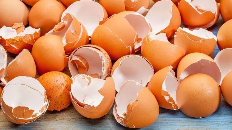 Yumurtanın kabuğu da faydalı