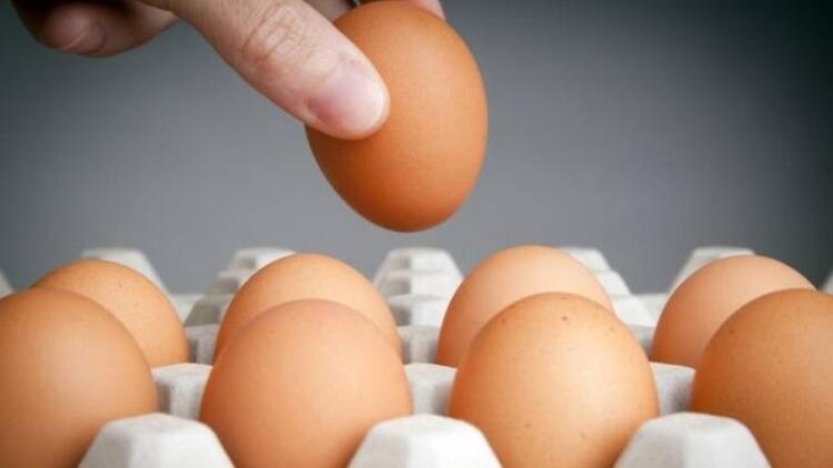 En ucuz ve kaliteli protein kaynağı
