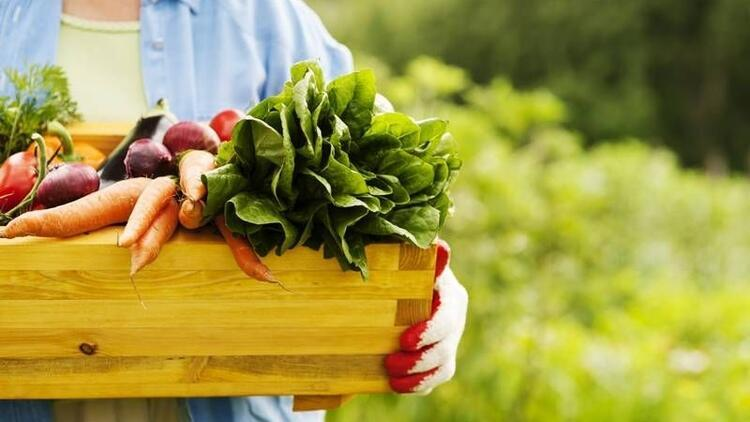 Vücudunuzda biriken yağlardan bu besinlerle kurtulun