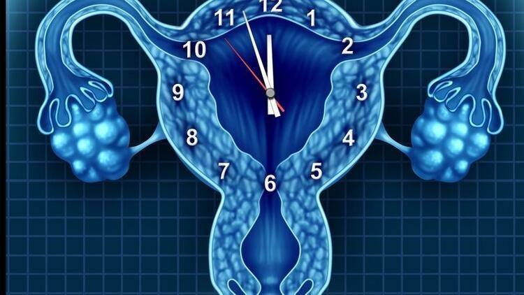 Düzensiz adet görenlerin yumurtlama dönemleri nasıl hesaplanır?