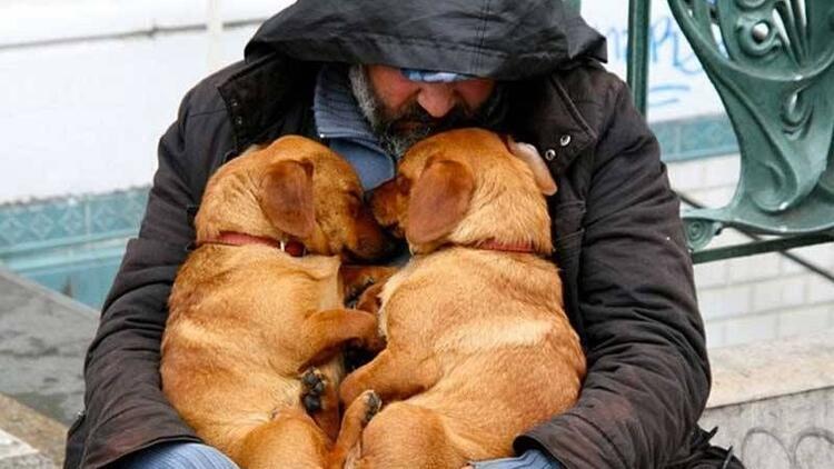 Evsiz insanların en sadık dostları