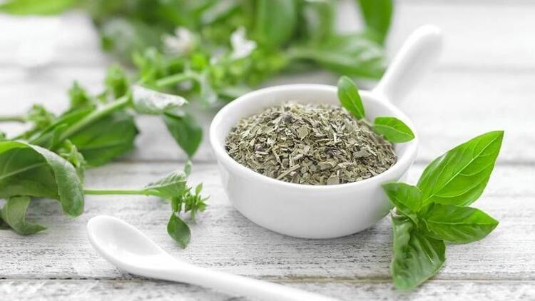 Mucizevi bitki reyhanın sağlığımıza 10 faydası