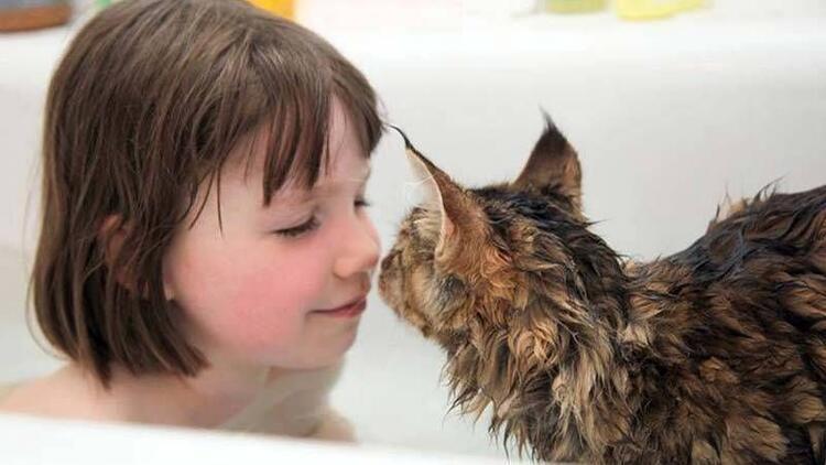 Otizmli küçük kız ve kedisinin müthiş arkadaşlığı