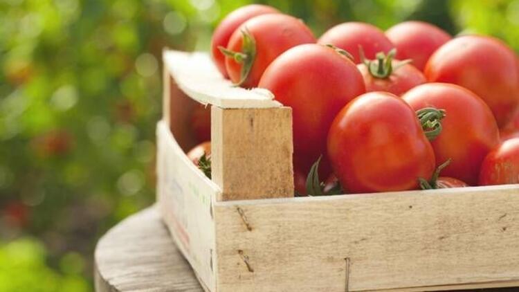 Felç riskine karşı domates mucizesi