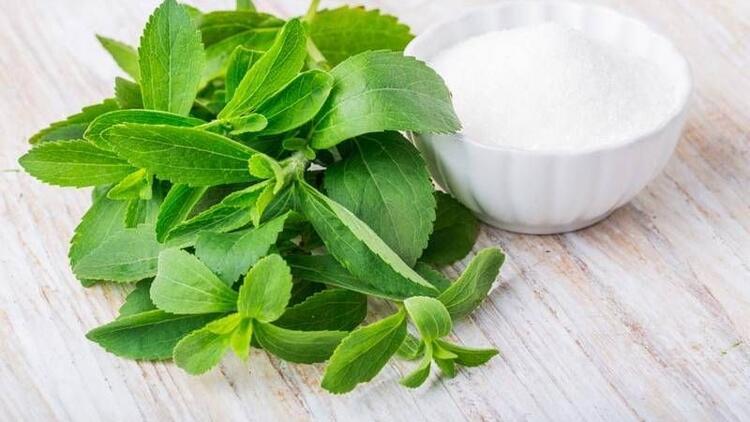 Şeker yerine stevya bitkisi kullanın!