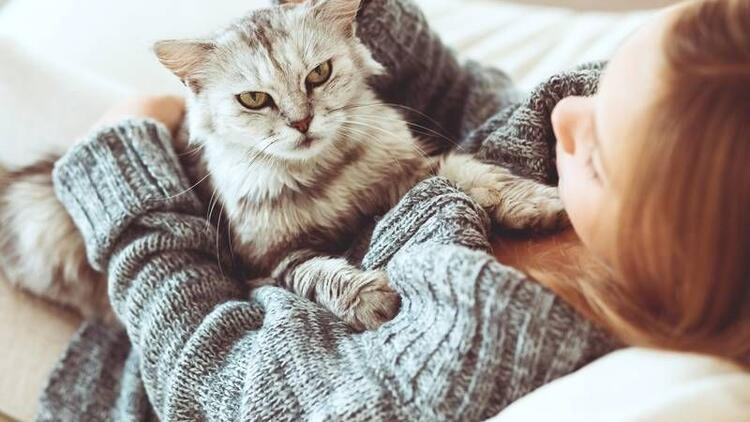 Kediler akıl sağlığını mı bozuyor?