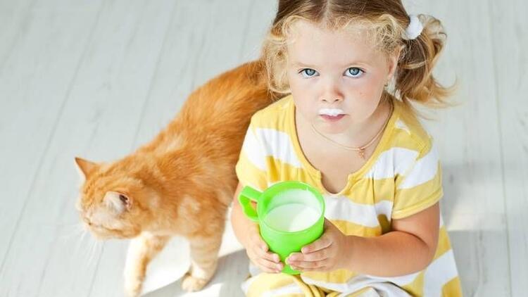 Çocuklarda inek sütü alerjisi nasıl anlaşılır?