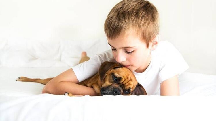 Evcil hayvanı ölen çocuğa yaklaşım nasıl olmalı?