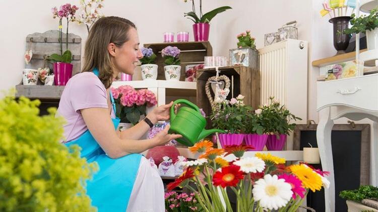 Evde kolay bakılabilen çiçek türleri