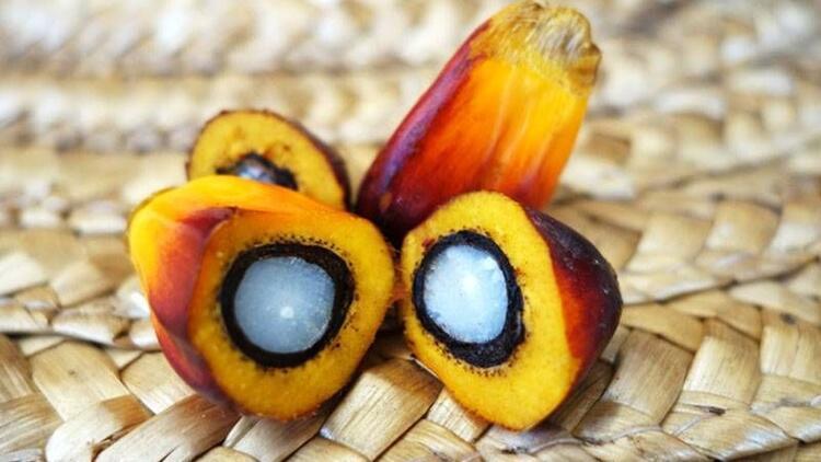 Palm yağı gerçekten zararlı mı?