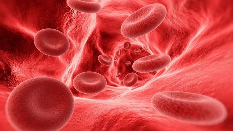 HGB (Hemoglobin) nedir? HGB yüksekliği, düşüklüğü