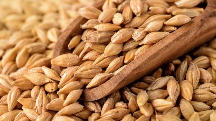 Tam taneli tahıllar kilo kaybına yardımcı oluyor