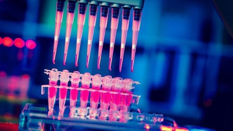 Genlerde zaman yolculuğu hastalıklara umut olacak