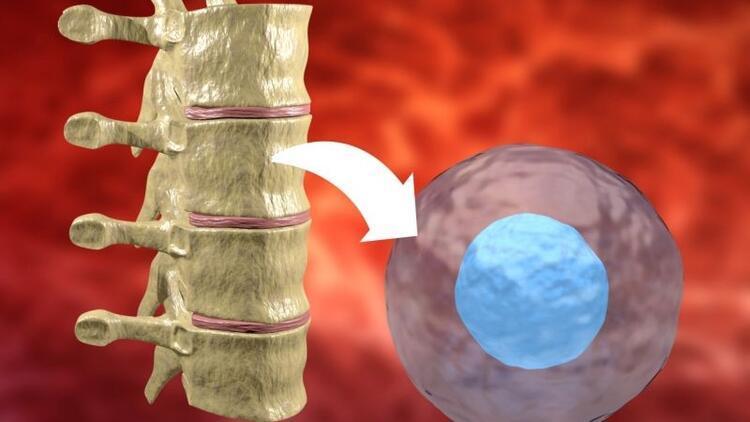 Kemik iliği nakli için donör nasıl olunur?