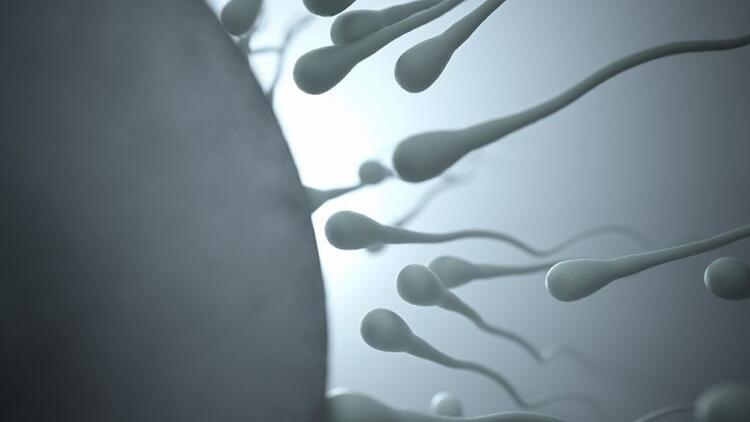 Tekrarlayan düşüklerin nedeni hasarlı spermler olabilir mi?