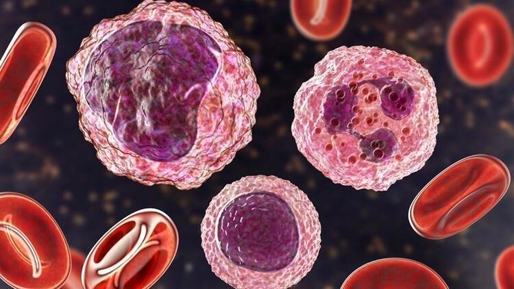Tüp bebek uygulamalarında lenfosit aşısı