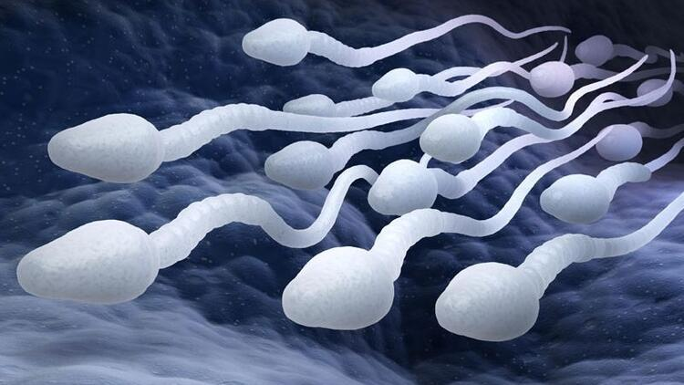 Meninin aşırı sulu olmasının sebebi nedir? Doğurganlığı etkiler mi?
