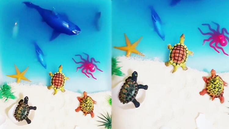 Okyanus duyusal oyunu