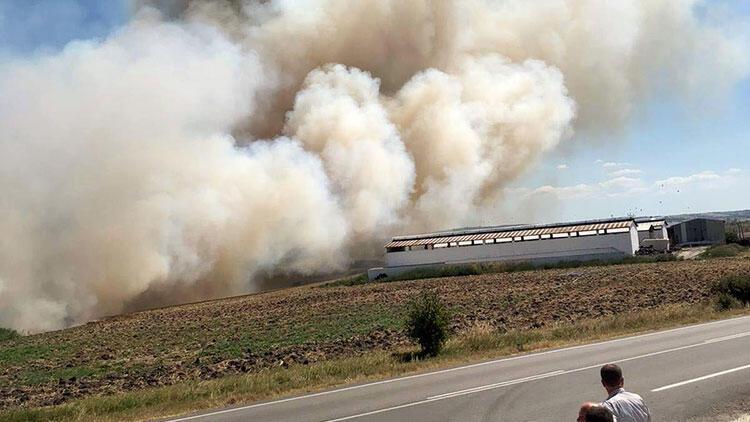 Söndürmeden attılar, 200 dönüm anız yandı