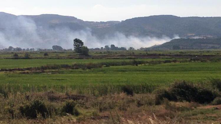 Manyasda orman yangını