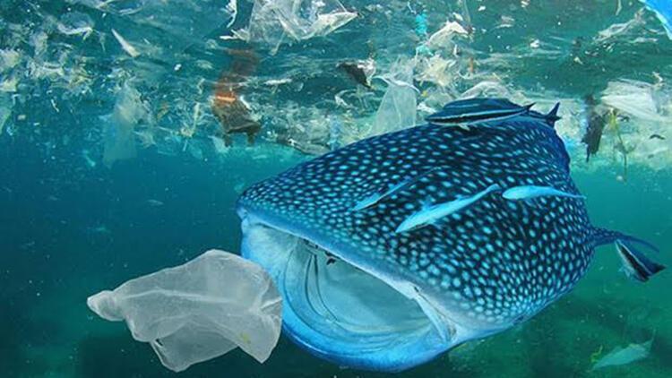 Tek Kullanımlık Plastikler Yasaklansın kampanyasına 500 bin kişiden destek