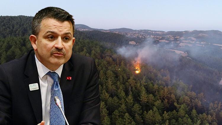 Son dakika haberi: Bakan Pakdemirliden orman yangınlarıyla ilgili flaş açıklama