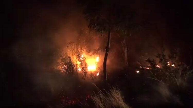 Silivride ağaçlık alanda yangın çıktı