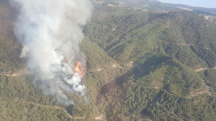 Son dakika haberi: Manisa'da orman yangını çıktı