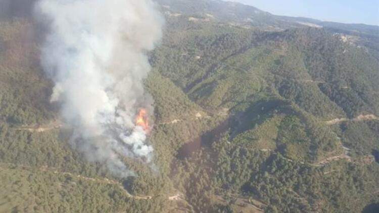 Manisada orman yangını Ekipler müdahale ediyor