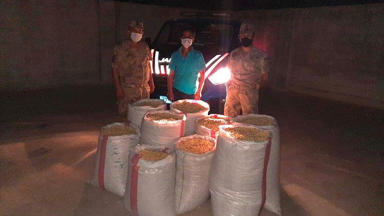 İki ton Antep fıstığı çaldığı iddia edilen şüpheliler yakalandı