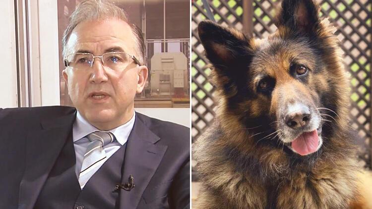 Alp Erkin kimdir? Daha önce bir köpeği daha öldürmüş!