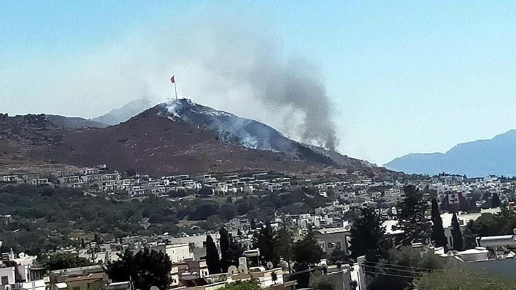 Bodrum'da yerleşim yerleri yakınında yangın