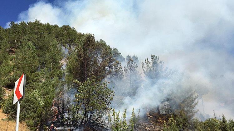 3 ayrı noktada yangın çıktı! 7 hektarlık alan zarar gördü