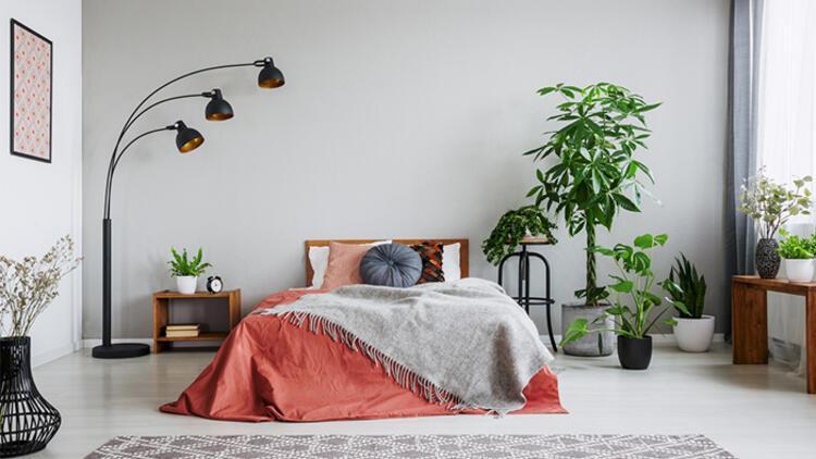 Feng Shui'ye Göre Yatak Odanızda Kullanmanız Gereken Renkler