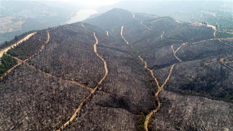 Adana'daki orman yangınında soğutma çalışmaları sürüyor