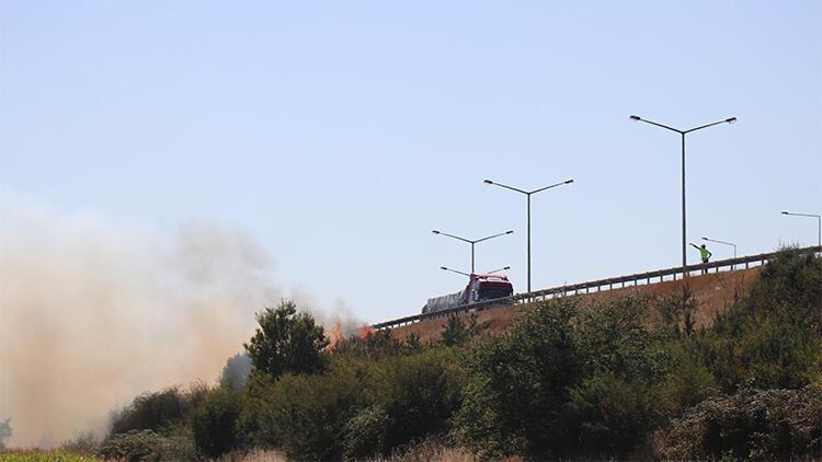 Sürücüler sigara izmariti attı.. Bolu'da 2 dönümlük alan alan alev alev yandı