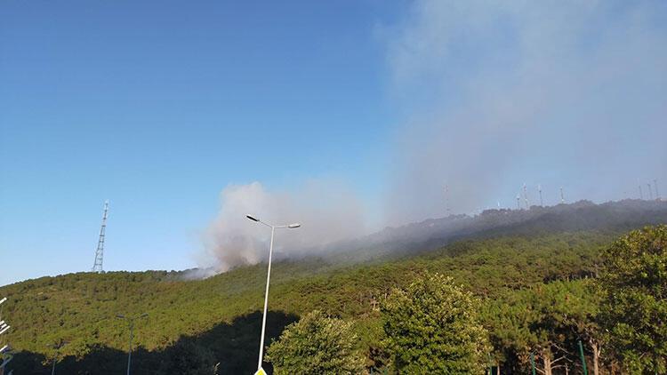 Son dakika haberi: Maltepede yine korkutan yangın