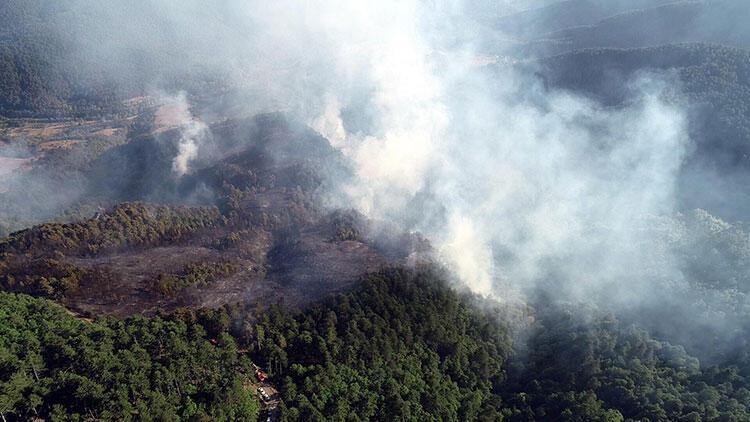Zonguldak'ta ormanlık alanda büyük çaplı yangın