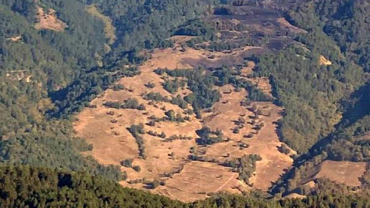 Zonguldak'ta ormanlık alanda çıkan yangın kontrol altına alındı