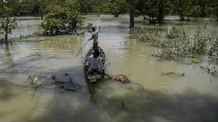 Bangladeş'teki sel felaketinde korkunç bilanço yükseldi