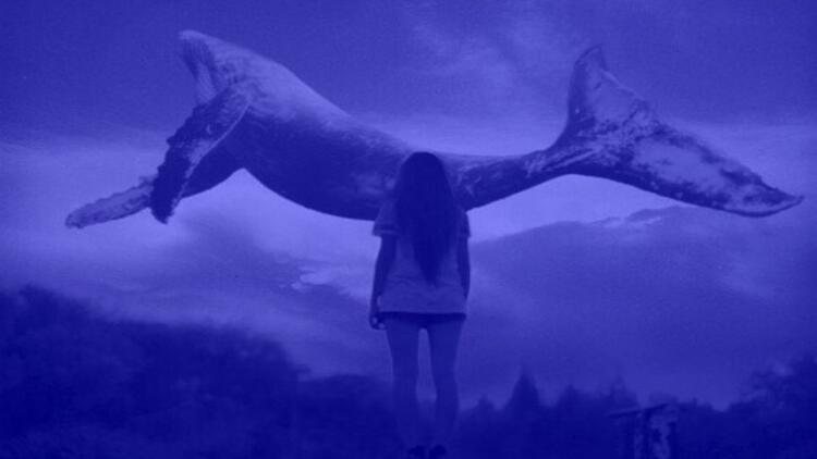 Telefonlarda mavi balina tehlikesine dikkat