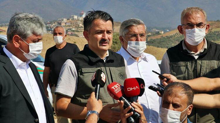 Son dakika haberler... Bakan Pakdemirli: Hatay'da 5 gündür süren orman yangını kontrol altına alındı