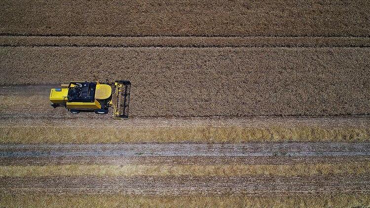Çiftçiler iklim değişikliği ve kuraklıkla mücadeleyi öğreniyor